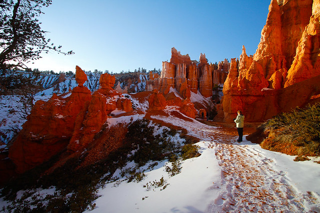 Bryce National Park in the snow-15.jpg