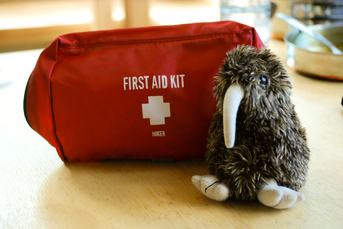 First Aid for the kiwi