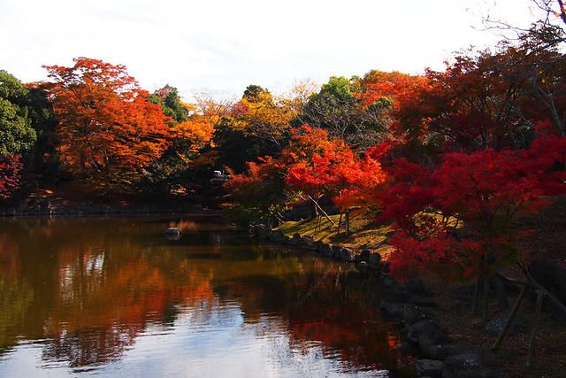20101116_115327_奈良公園