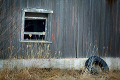 A tired barn (mckenziemedia) Tags: wood blur window barn canon eos weeds bokeh tire 100mm m42 5d weathered 28 f28 meyer optik stevemckenzie trioplan mckenziemedia 15000refrigeratorscom