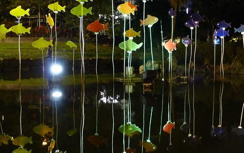 羅東夜市-美麗的池塘夜景