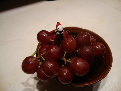 poppet in grapes2