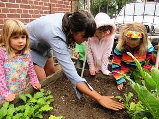 Abernethy School Kitchen Garden