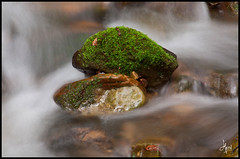 Green rock (hema_s) Tags: california creek moss saratoga sanborn greenrock sanborncountypark