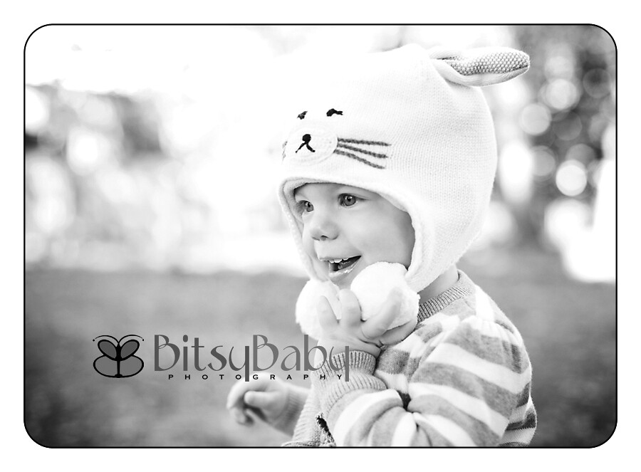 baby photography itsy bitsy bundle