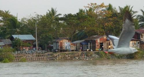Yangon-Pathein-Bateau-Soiree (9)