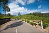 Mountain Roads in Munnar, Kerala (Souvik_Prometure) Tags: india tea kerala teagarden teaplantation southindia westernghats sigma1020mm idukki nikond90 westernghatsindia souvikbhattacharya