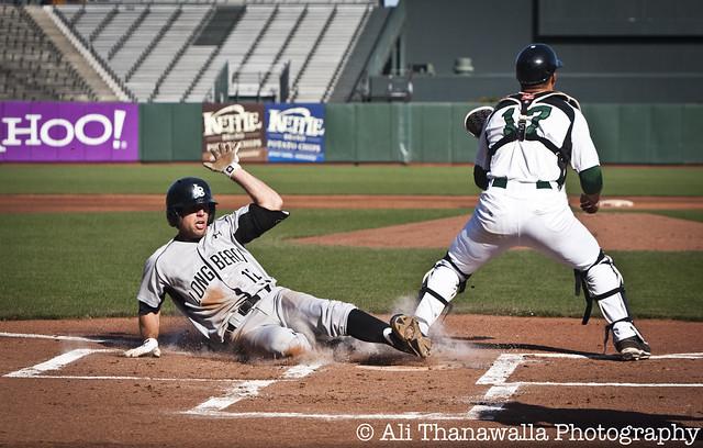 USF_LongBeachState_Baseball_04