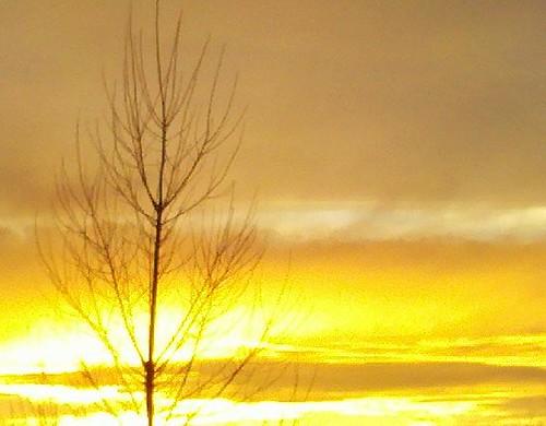 Sunset_20110313