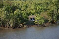 saigon_river_2 (H Sinica) Tags: vietnam mekongdelta saigon hochiminhcity mekong mekongriver lancang   lancangriver