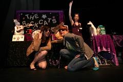 Alison & Gina (massdistraction) Tags: minnesota midwest minneapolis kittens kitteh felines twincities mn lakestreet rescuecats acrocats achicken heartofthebeasttheater catcircus circuscats trainedcats therockcats agroundhog