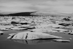 Jkulsrln Glacier Lagoon Iceland (tobiasbegemann) Tags: jkulsrln glacier lagoon iceland ice water bw black white tobias begemann saarbrcken germany world street landscape people animal travel photography creative commons flickr outdoor