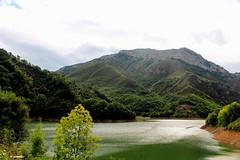 1.077 - Qu verde era mi valle! (esnalar) Tags: 700dcanon tanes caso casu altonaln asturias asturies principadodeasturias principaudasturies parquenaturaldereres parasonatural espaa spain montaa montaismo naturaleza nubes senderismo mountain mountaineering nature clouds trekking