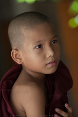 _MG_2367-le-14_04_2016-wat-thail-wattanaram-maesot-thailande-christophe-cochez (christophe cochez) Tags: burmes burma birmanie birman myanmar thailand thailande maesot myawadyy monk bonze novice religion watthailwattanaram travel voyage bouddhisme buddhism portrait