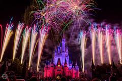 Magic Kingdom ([inFocus]) Tags: florida disney magickingdom cinderellacastle canon 5dmkiii 5d fireworks display usa colour colours night nightshot nighttime long longexposure lowlight castle crowd