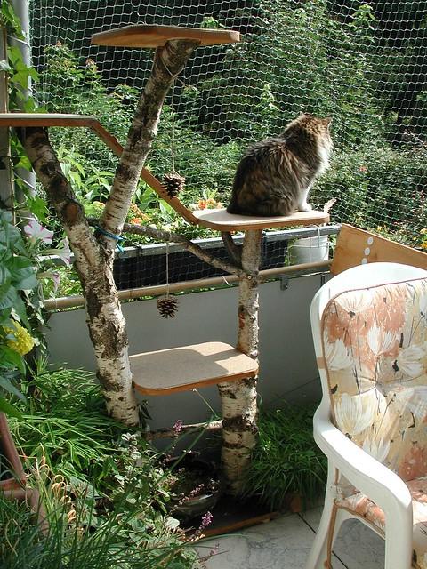 kratzbaum für draußen katzen