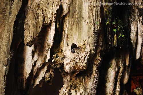 Batu-Caves_027a