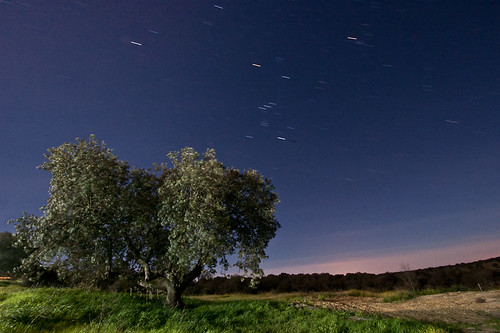 Fotografía nocturna en la dehesa extremeña