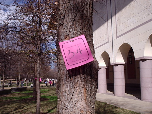 We got tree 34