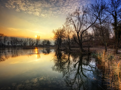 Un matin au lac Saint Andr - La parade des arbres (Girolamo's HDR photos) Tags: morning winter light sky sun lake france tree ice nature clouds sunrise canon reflections french landscape photography savoie hdr girolamo photomatix tonemapping canoneos50d lacsaintandr cracchiolo omalorig wwwomalorigcom gettyimagesfranceq1