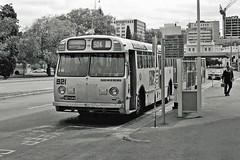 MTT bus 921, Victoria Square busstop (railfan3) Tags: adelaidebus mttbus bus buses adelaide victoriasquare busstop 921 504 sta vintage classic south australia leyland worldmaster mtt public transport sa oldtimers former australian leylandwworldmaster