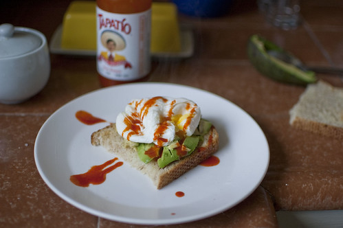 poached egg + avocado toast
