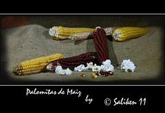 Palomitas de maiz (Santiago Vidal - Saliken) Tags: canon eos saco maiz bodegon palomitas 400d panochas saliken