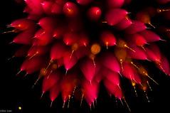Outwards (Bluemonkey08) Tags: newcastle fireworks bokeh australia nsw foreshore fader d90 ericlam nikond90 bluemonkey08 tokina100mmf28atxprodmacro faderfilters australiaday2011