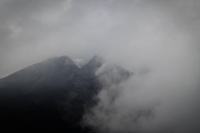 Foggy Pacayay - Guatemala