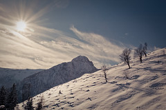 Star (Clickpix) Tags: schnee winter vacation lake snow ski alps tree snowshoe austria see tirol sterreich wolken berge summit alpen sonne ferien achensee schneeschuhe