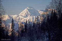 Denali (Ken Marsh Wild Northwest Images) Tags: mountain alaska ak peak denali alaskarange alaskan crag mountmckinley kenmarsh wildnorthwestimages
