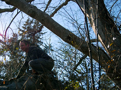 Alex (aliluyya) Tags: man tree liberty climb nc northcarolina camo climbing land piedmont triad