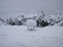 tavolino in giardino in 8 ore di neve (Marco&Elisa) Tags: appenninosettentrionalealpinatura