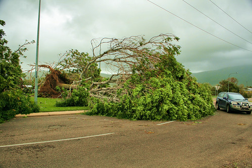Roundabout Bowen road and Macarthur drive