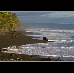 Wild beach - Carate - Osa peninsula  - Costa Rica (Lucie et Philippe) Tags: voyage trip travel america nationalpark costarica central corcovado centrale osapeninsula amérique laleonaecolodge