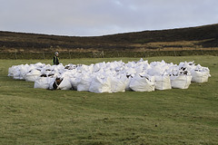 Preparing the next load(s) for lift by Helicopter (egcc) Tags: heather glossop moorland airlift brash chunal thegrouseinn