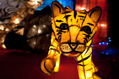 The Tiger has Left (Todor Kamenov ) Tags: festival taipei lantern
