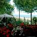 Il B&B Villa Maria offre colore, riservatezza, tranquillità!