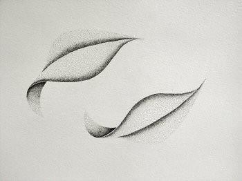 Dessin à l'encre, au point, sur papier aquarelle représentant une architecture végétale inspirée d'un pétale de dimension 30x40cm. Dans ce duo, les deux formes sont en approche – Sandrine Vallée
