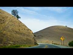 Around the Bend (PezMan23) Tags: california road vacation tree sign june canon driving hills hillside 2009 aroundthebend route46 powershotsd1200is