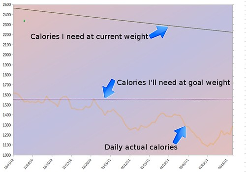 Graph showing calorie needs high and calorie intake low