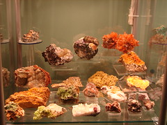 Mineral collection (The Resistance Image Library) Tags: color nature rock museum compound interesting rocks crystals gallery display personal crystal collection 400 views minerals excellent mineral bullseye colourful geology 500 amateur information magiceye interest naturalwonders godscreations element motherearth specimen reference chemical informative bestofflickr inorganic specimens geological aclass mineralogy hitme locality blueribbonwinner rockhound bestofme instantfave theworldthroughmyeyes nicepicture mineralogical flickrspecial aplusphoto crystallinestructure ultimateshot globalvillage2 treasuredthings elpasojoes exemplaryshots eyejewels colourartaward naturallyoccurring thebestofday gününeniyisi geometricspatialarrangement resistance2010