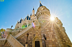 Walt Disney World - Cinderella Castle (Tom.Bricker) Tags: wideangle disney disneyworld mickeymouse waltdisneyworld magickingdom waltdisney cinderellacastle ultrawideangle disneyphotos wdwfigment tombricker
