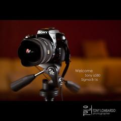 Welcome Sony a580 & Sigma 8-16mm (tolombardo) Tags: new blur lens mirror reflex exposure photos sony sigma concept alpha tolo obbiettivo strobist a580 sigma816