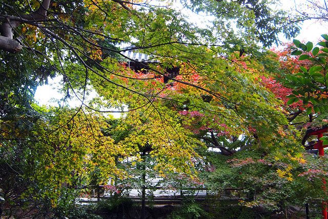 20101116_121451_新薬師寺