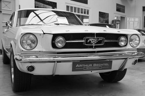 Pony. 1966.