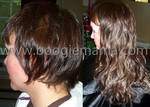 """Short to Long - Human Hair • <a style=""""font-size:0.8em;"""" href=""""http://www.flickr.com/photos/41955416@N02/5484108805/"""" target=""""_blank"""">View on Flickr</a>"""