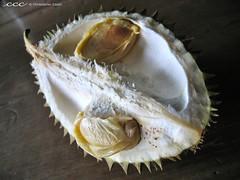 Indonesia-Bali / Durian