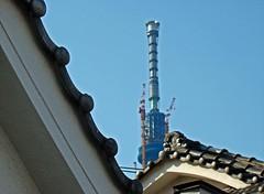 Edo-Style Architecture and the Tokyo Sky Tree (Rekishi no Tabi) Tags: japan tokyo  shinto edo plumblossoms  kotoku  umeblossoms  shintoshrines kameidotenjinshrine