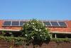 Solar Powered Hibiscus